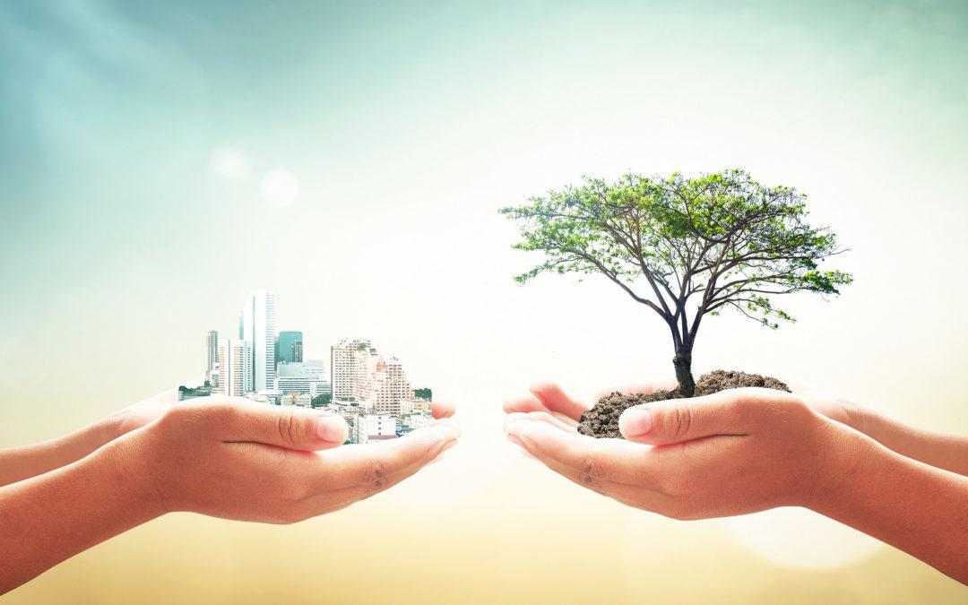 De omgevingsvergunning: bij de les blijven is de boodschap!