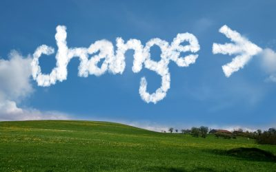 De manager en change: weerstand ombuigen en verandertrajecten begeleiden.